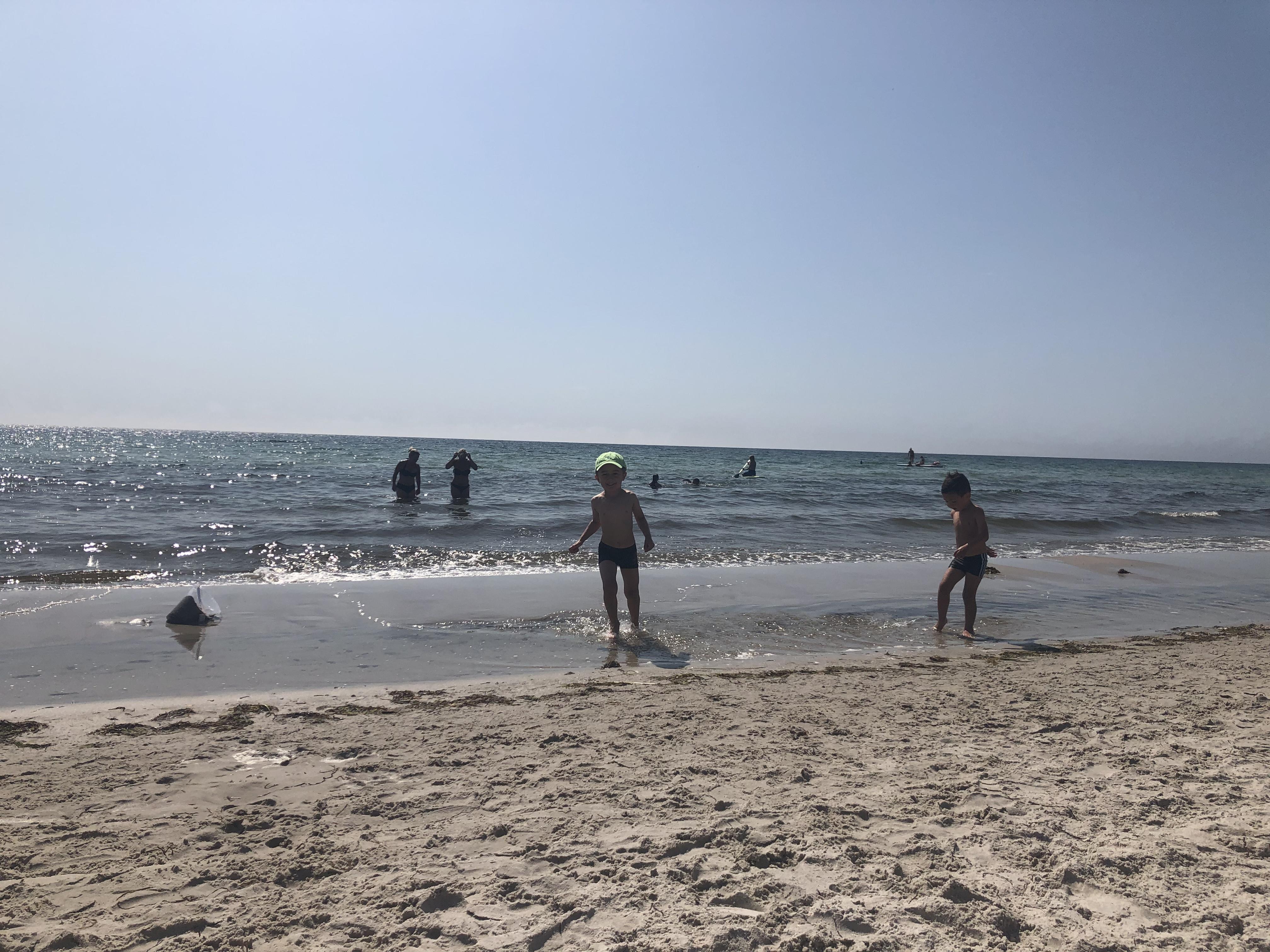 Ljunghuset strand & kusin häng